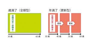 定期保険(歳満了と年満了)